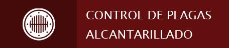 Control de plagues del clavegueram