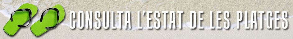 Consulta l'estat de les platges de Tarragona